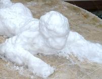 A Snowman at Home