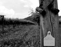 Darling Estate Wines