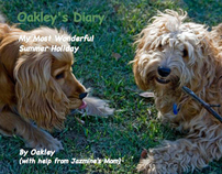 Oakley's Diary - a blog-to-book