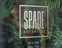 Spade Botanical | Branding