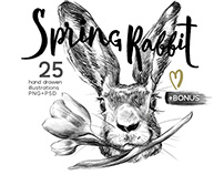 Spring Rabbit illustrations