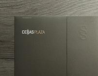 CESSAS PLAZA / 2013