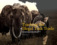 DPS Tracking the Illegal Tusk Trade