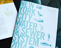 New York Water Agency