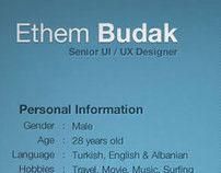 Ethem Budak - CV