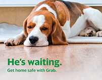 Pet Planner Ads