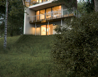 Buisson Residence architecture by Robert M/reproduction