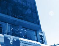 Relatório Sebrae 2011