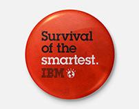 IBM Graduate Campaign