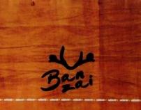 BANZAI BOARDS. Sistema (fragmentos)