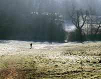 Hampstead Heath Series #2 - Solitude and Solace