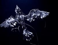 Blind Bird / Boom Boon Satellites