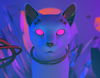 CAT/Experimental independent project/