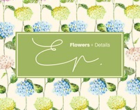 A Brandeá EP. Flowers + Details