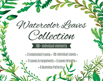 Watercolor Leaves Collection (85% OFF)