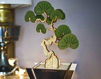 Flat packed Yew Bonsai tree