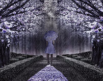 A Walk through the Flowers