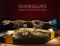 Dinosaurs– Dawn to Extinction