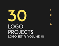 30 Logo Projects // Volume 01