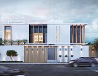 Modern house 14110