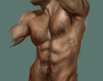 Study of body (8 illustrations inside)