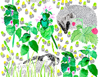 Flora - Fauna - Pattern collection