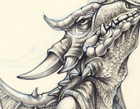 Dragon studies