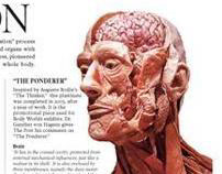 The Science of Plastination