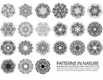 Mandalas of Nature