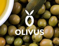 OLIVUS // Corporate Identity