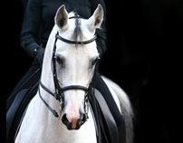 Equestrian Couture