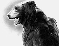 Bestiary Game of Thrones - Bear