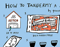 How to Taxidermy a Mouse