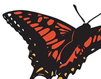 Butterfly Chorus