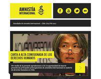 Newsletter Amnistía Internacional – Propuesta