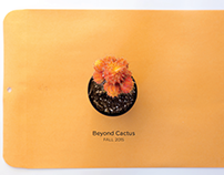 Beyond Cactus