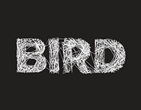 Bird Film Production company.