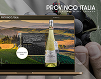 Provinco Italia website