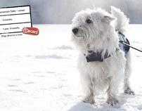 Purina T-Bonz Dog Treats Photo Shoot - Fallon, Agency