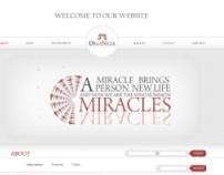 Organizer - Miracles