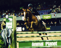 Exhibition Jump Design for Animal Planet (DC)
