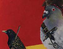Pirate Pigeons