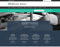 Fallbrook Agency - Website Template