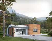 Projekt domu Amika