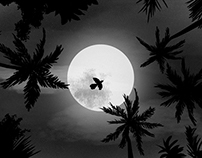 Dark by Nature – Ticús