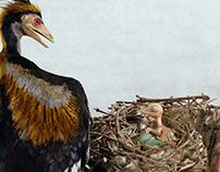 Archaeopteryx nest scene