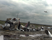 Supermarine Spitfire Down