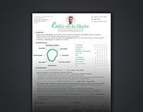 Resume Cédric de La Chaise - Digital project manager