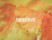 """""""Gazebo"""" Observe & Describe Details in a Clean Way"""