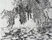 River Sketch